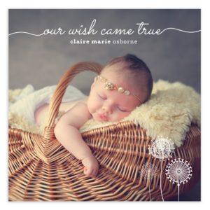 5X5 Newborn Announcement for photographers