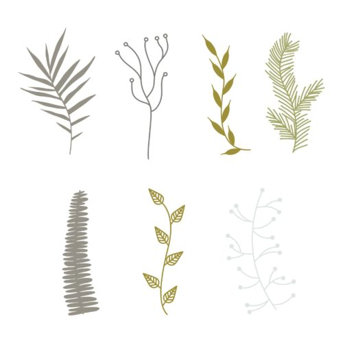Branch Elements PNG