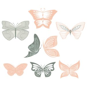 png butterfly elements for designers and scrap booking