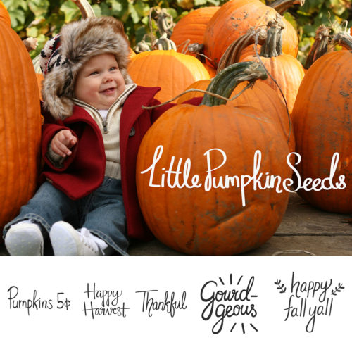 fall word art photo overlays