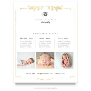simple gold newborn price guide template