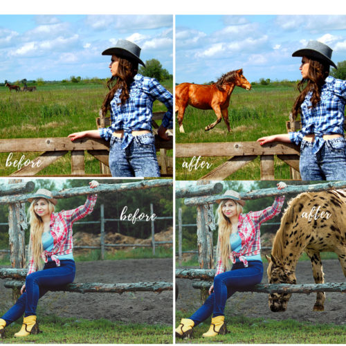 Horse Overlays for Photoshop