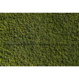 green fields texture aerial stock photo