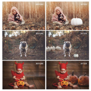 pumpkin PNG overlays for Photoshop