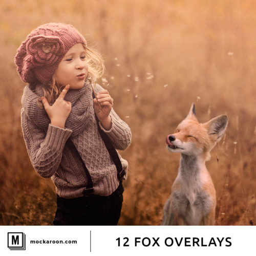 fox photo overlays
