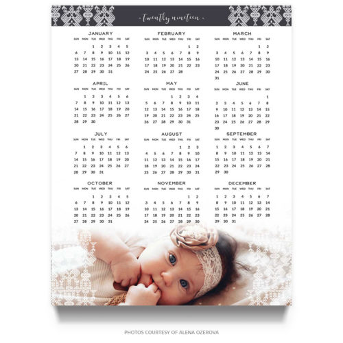 Newborn Photographey 2019 Calendar Template