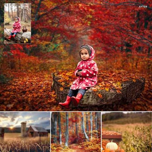 Fall digital backdrops for Photographers