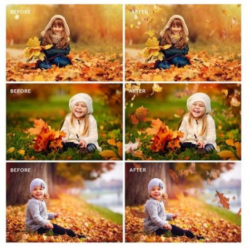Fall Leaf Photo Overlays