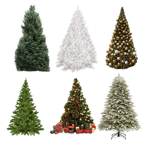Christmas Tree Overlays PNG