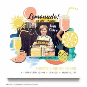 Lemonade Stand Mini Sessions Marketing Board