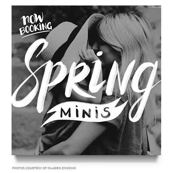 Spring Minis Marketing Board Template for Photographers