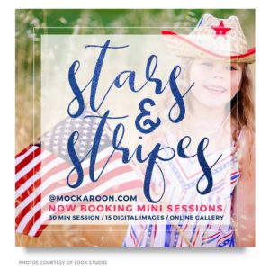 stars and stripes mini session marketing board