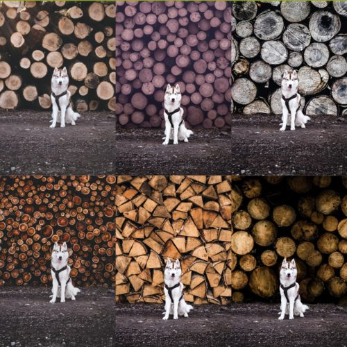 Wood Pile Backgrounds